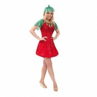 Aardbeien carnavalskleding dames