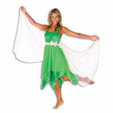 Elfjes carnavalskleding groen dames