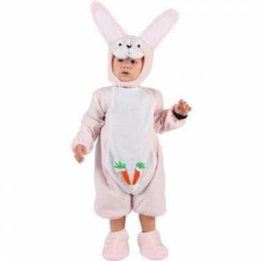 Roze konijntjes carnavalskleding babys