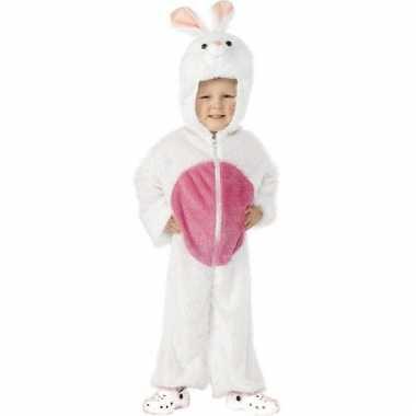 Wit koninencarnavalscarnavalskleding kinderen